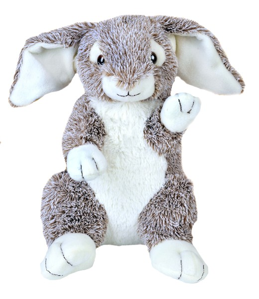 Forest le lapin bunny
